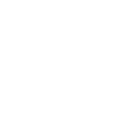 Mr Ant's Logo